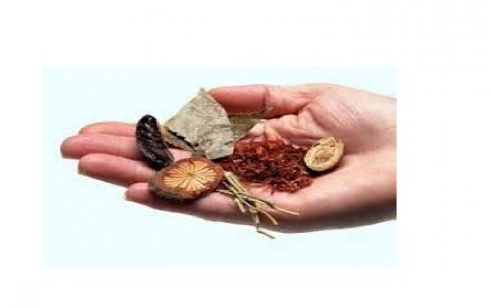 Associação de Medicina Chinesa e Terapias Naturais
